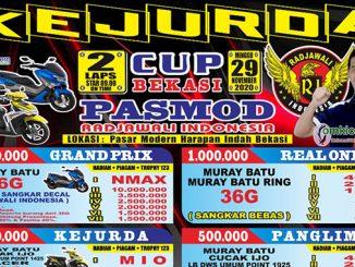 Kejurda Cup